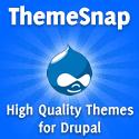 Best Drupal Premium Themes