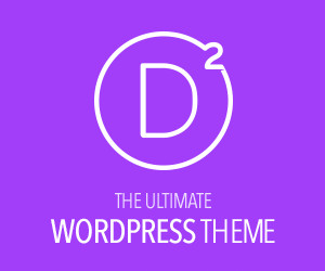 The Ultimate WordPress Theme