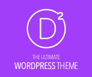 The Ultimate WordPress Theme
