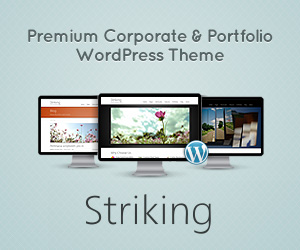 Striking Premium Corporate & Portfolio WP Theme